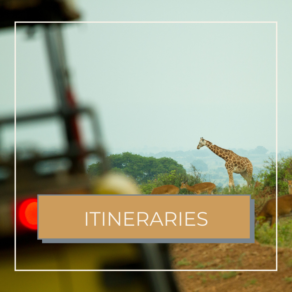african itineraries